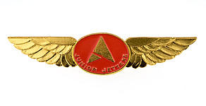 Ansett Australia Junior Jetters Wings