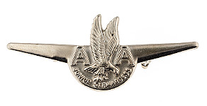 American Airlines Junior Stewardess Wings