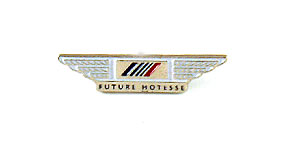 Air France Future Hôtesse Wings