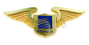 Copa Airlines Piloto Jr Wings