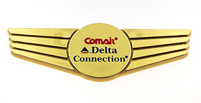 Comair Delta Connection Wings