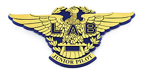 Lloyd A�reo Boliviano Junior Pilot Wings