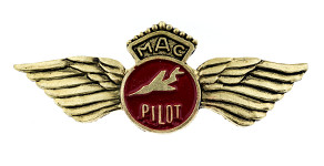 Martinair Pilot Wings