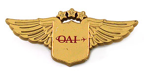 Omni Air International Wings