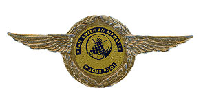 Pan American World Airways Master Pilot Wings