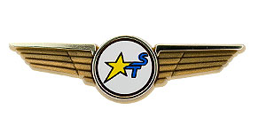 Sky Trek International Airlines Wings