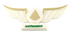 Northeastern International Airways Wings