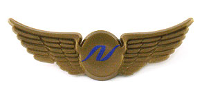 National Airlines (1999-2002) Wings