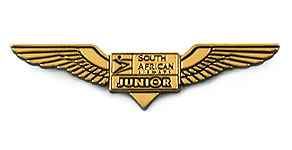 South African Airways Junior Wings