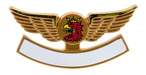Malm� Aviation Wings
