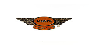 Viasa Junior Air Club Wings