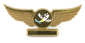 ValuJet Wings