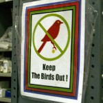 Apparently, the birds obey the signs, because I didn't see any.